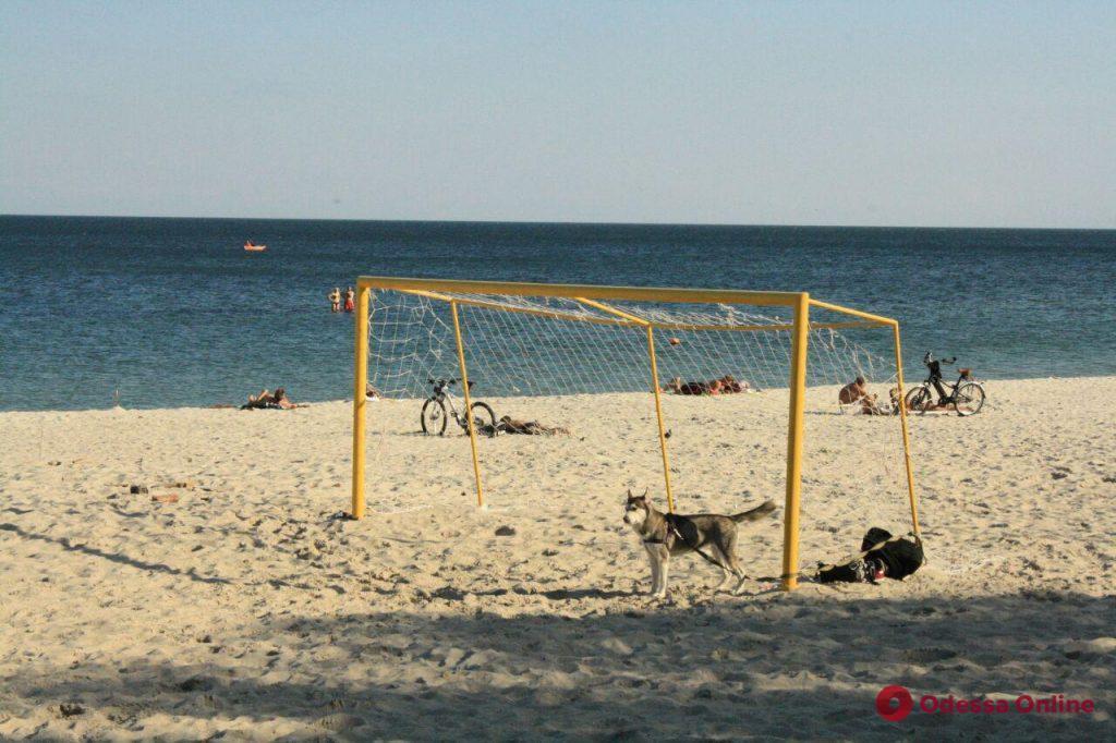 Лето не кончается: одесситы нежатся на пустых пляжах (фоторепортаж)