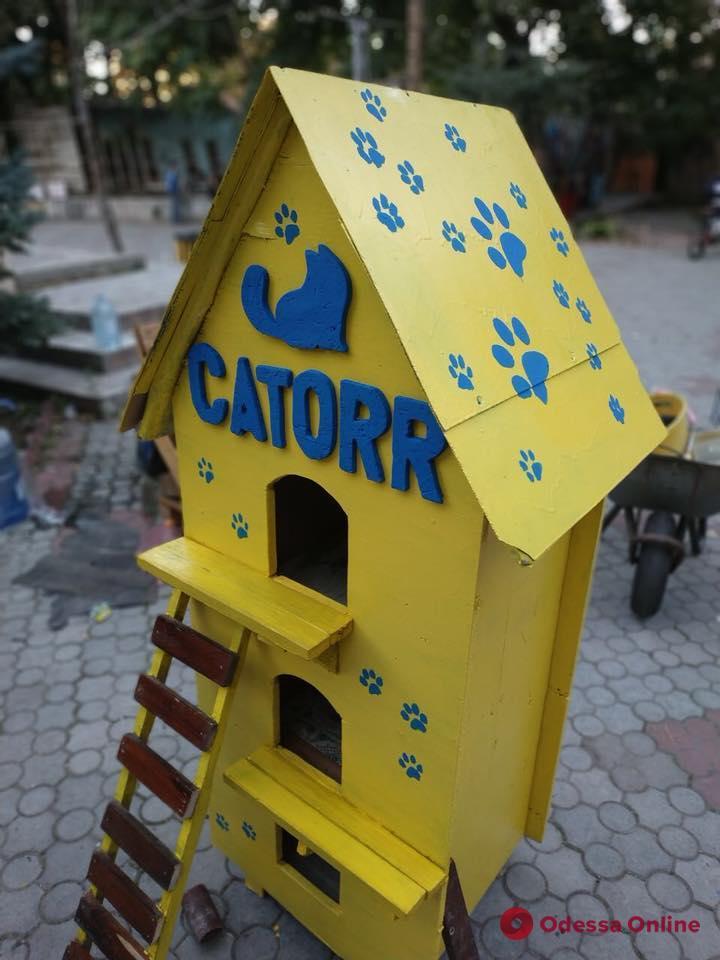 Одесса: в Летнем театре соорудили теплый дом для бездомных котов (фото)
