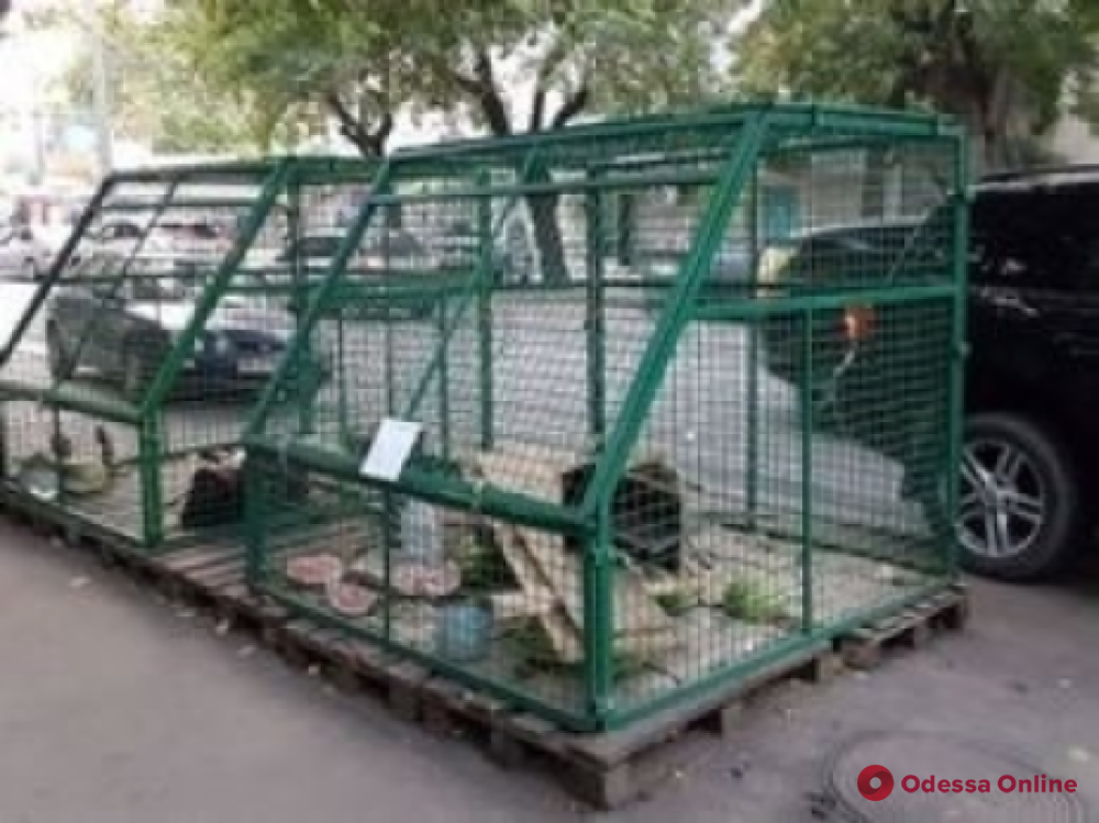В Одессе демонтировали заброшенные МАФы и закрыли арбузные клетки