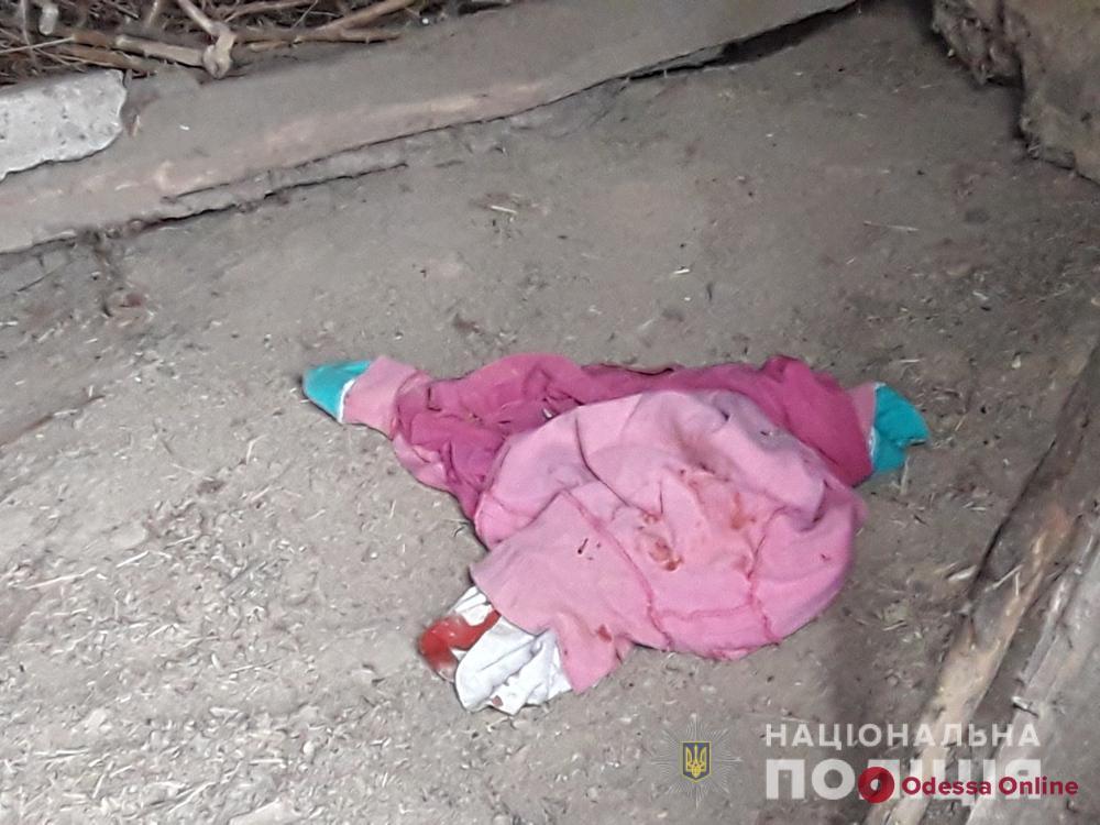 Жил в ее доме: убийцей 9-летней девочки оказался квартирант-иностранец