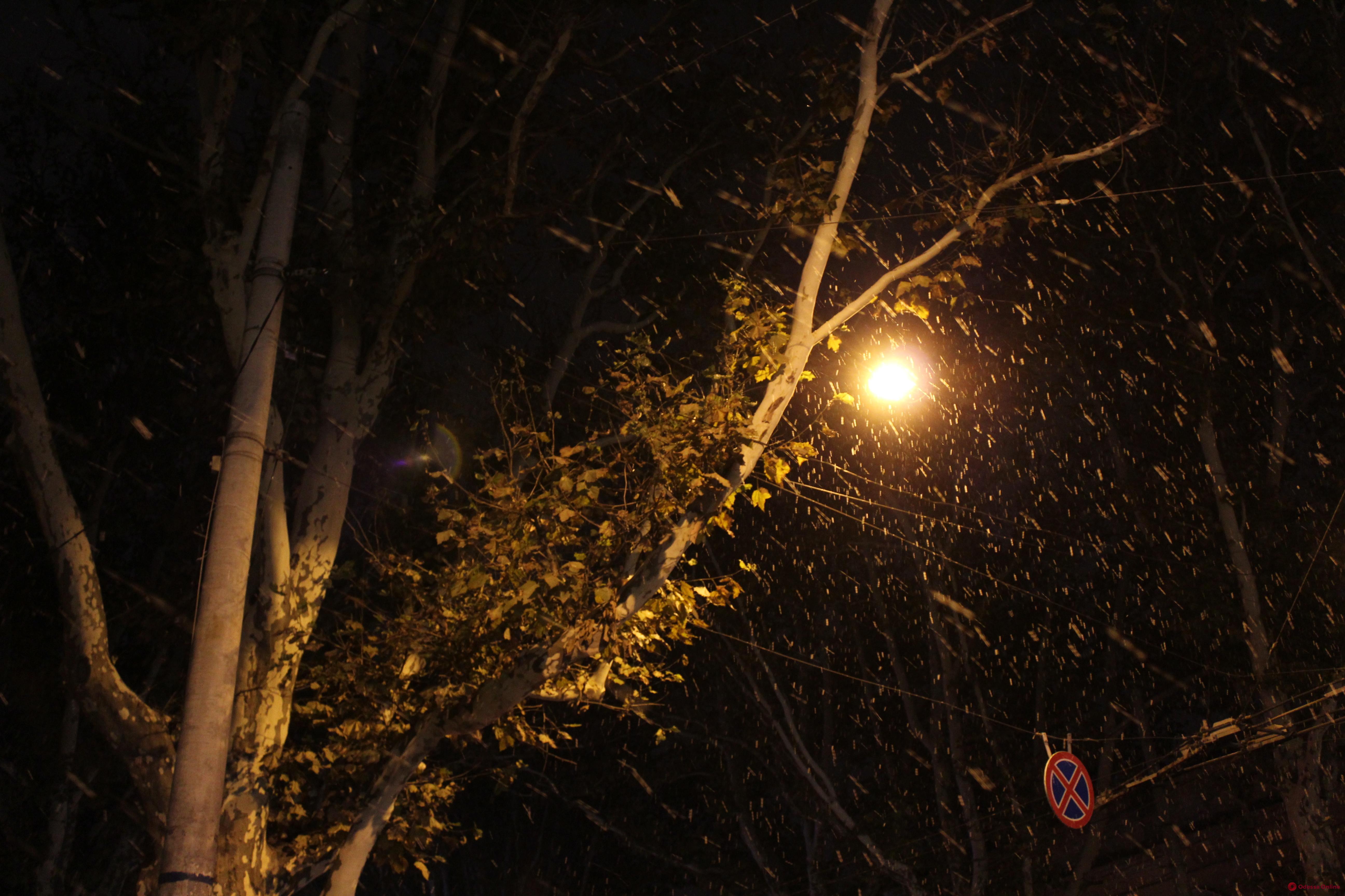 О погоде: 26 января в Одесской области ожидается дождь, мокрый снег и гололед