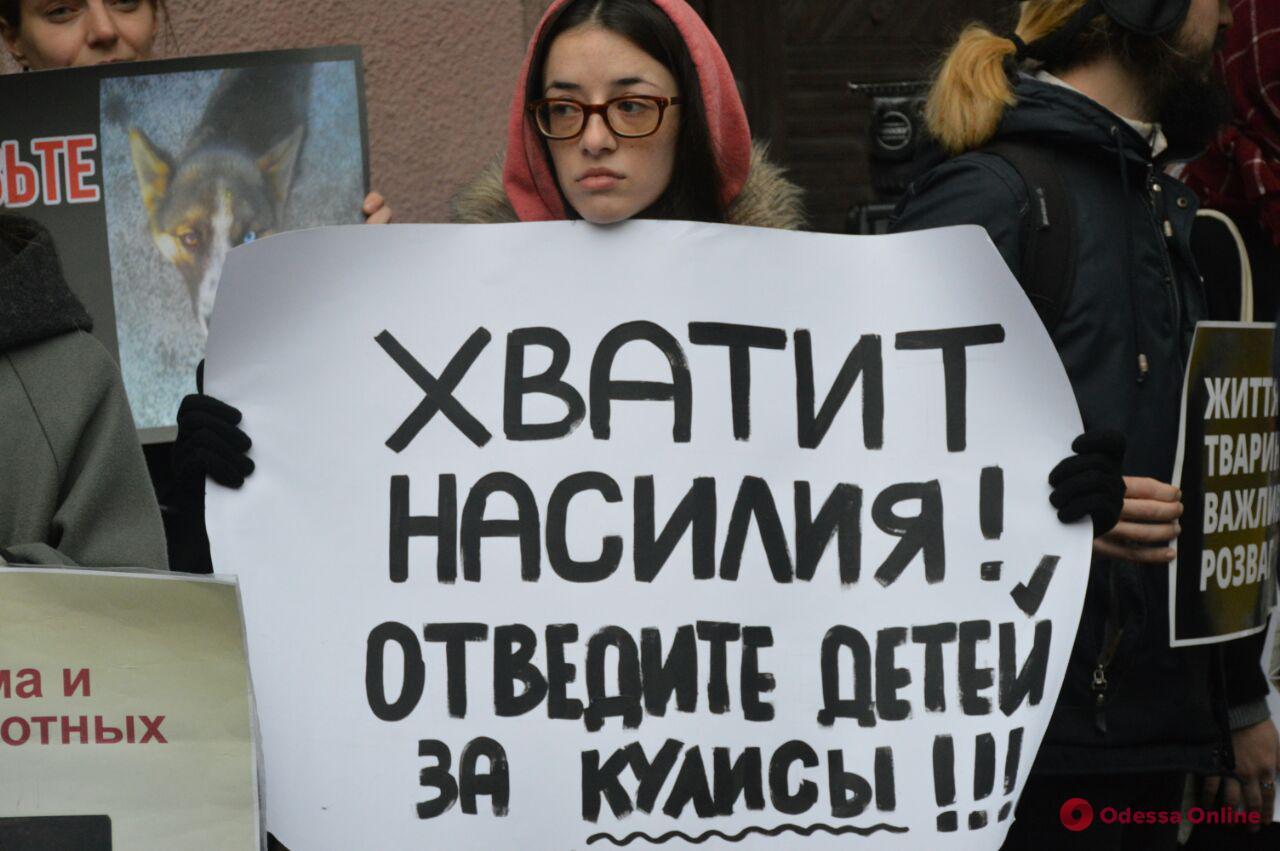 Зоозащитники снова пикетировали Одесский цирк (фото, видео)