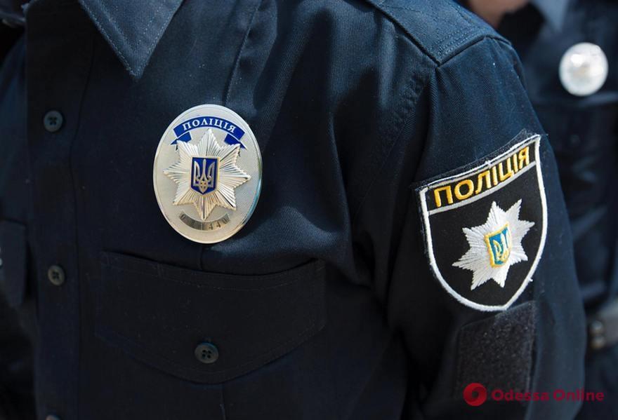 Жительница Подольска получила условный срок за нападение с отверткой на полицейских