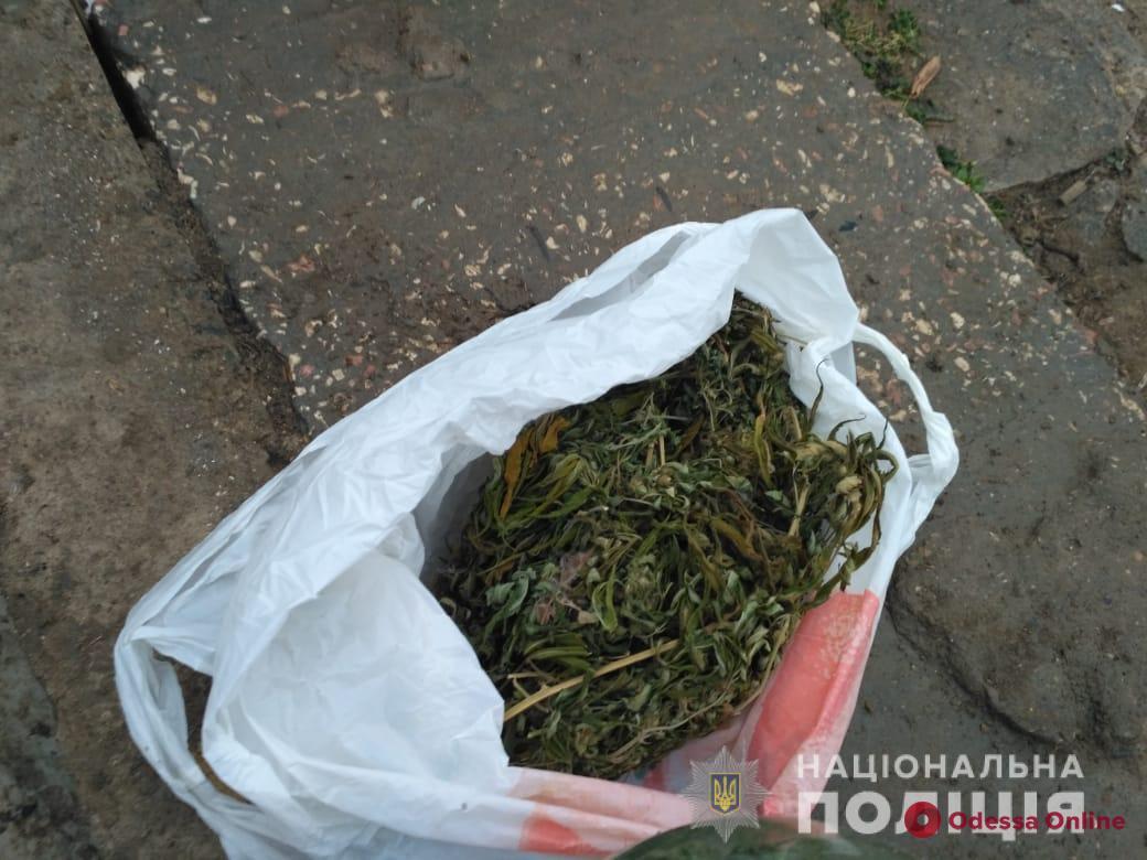 Заготовил на зиму: житель Одесской области хранил марихуану в банках