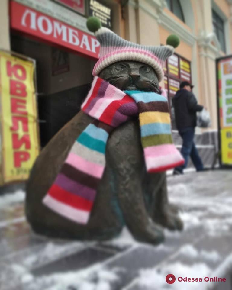 Одесса: кошачьи скульптуры нарядили в теплые вещи (фото)