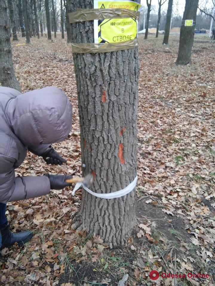 Не разобрались: на 411-й батарее активисты снесли забор и вбили гвозди в десятки деревьев
