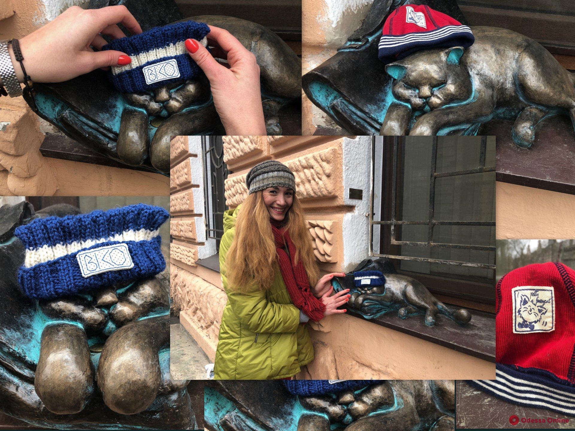 Согреть Мориса: любимого кота Жванецкого задарили шапочками (фотофакт)