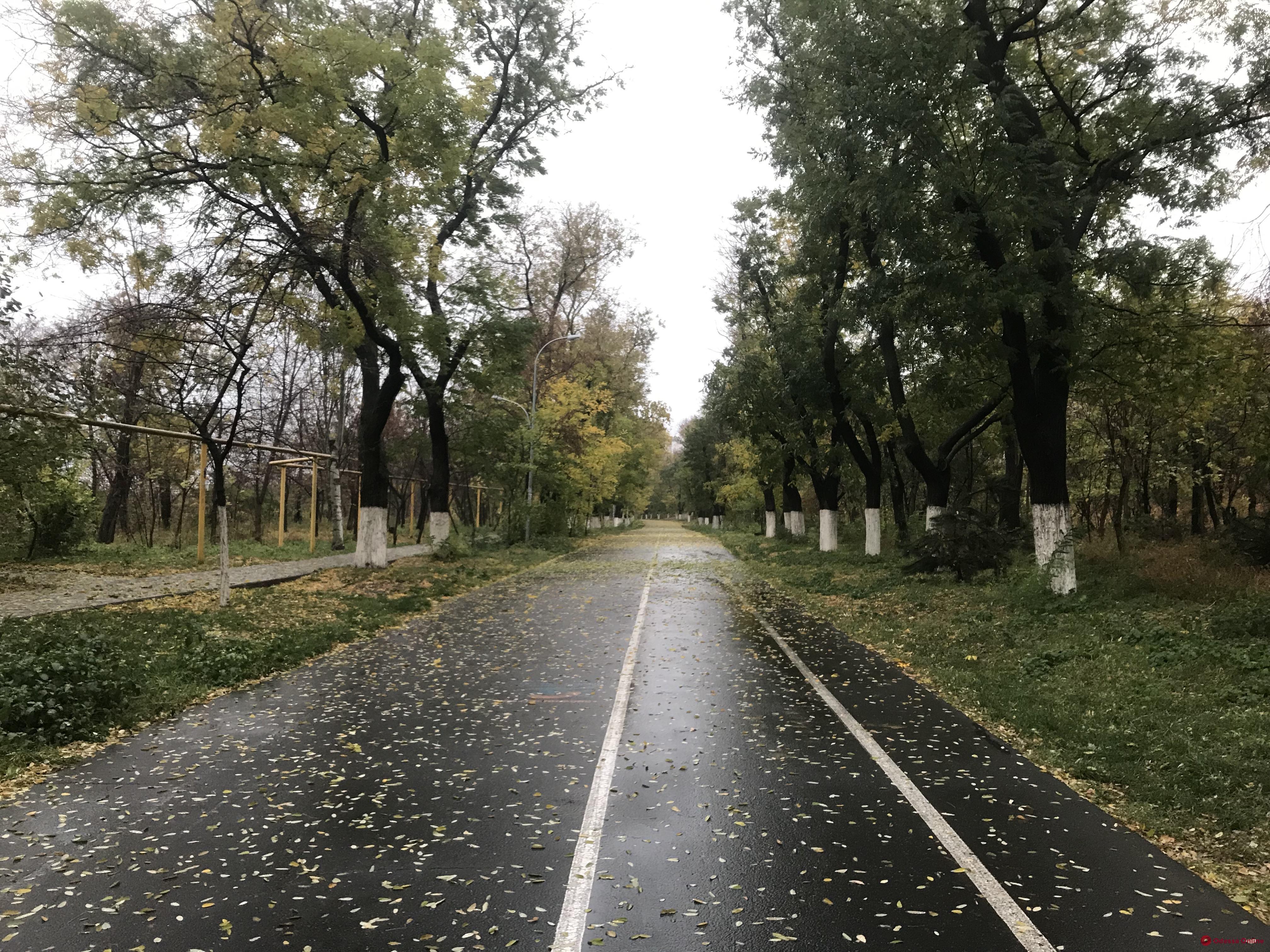 В одесских зеленых зонах хотят установить тревожные кнопки