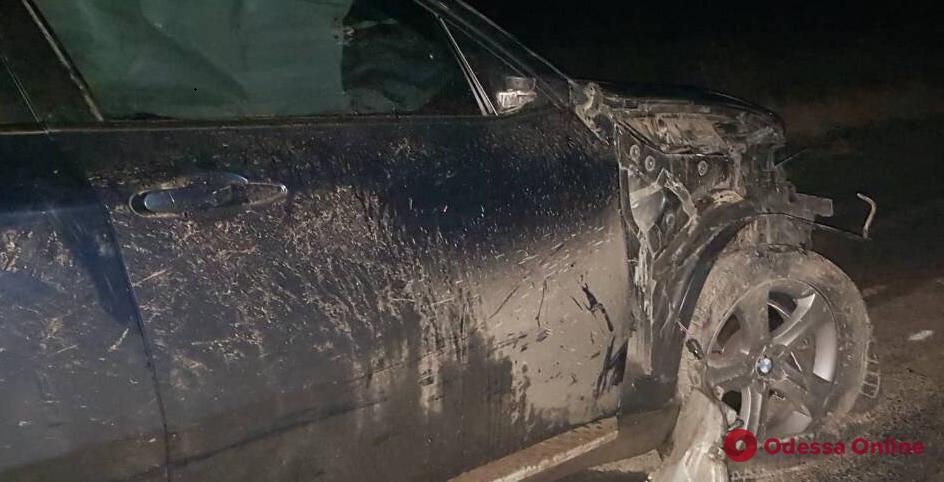 В Одесской области BMW врезался в гужевую повозку: есть погибший