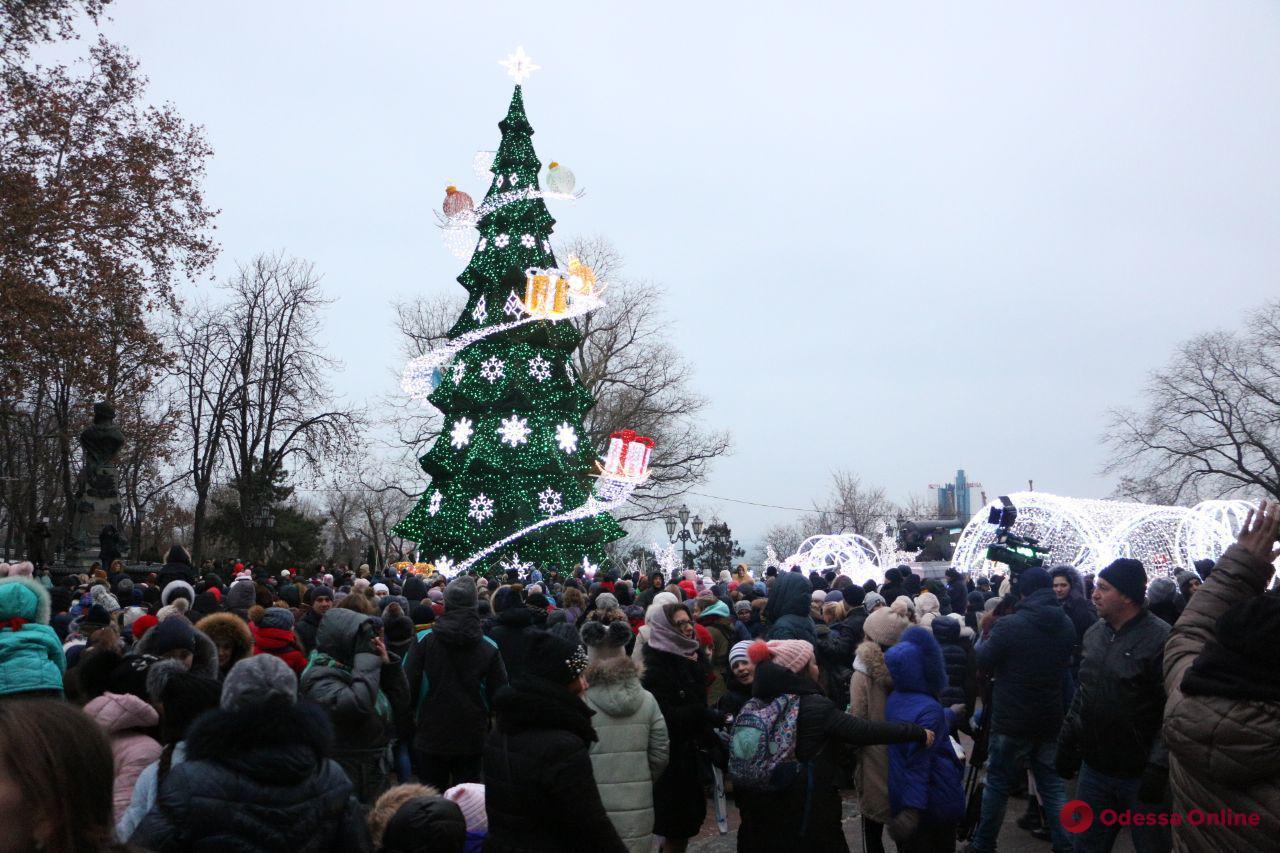 На Думской площади разноцветными огнями засияла главная елка города (фото, видео)