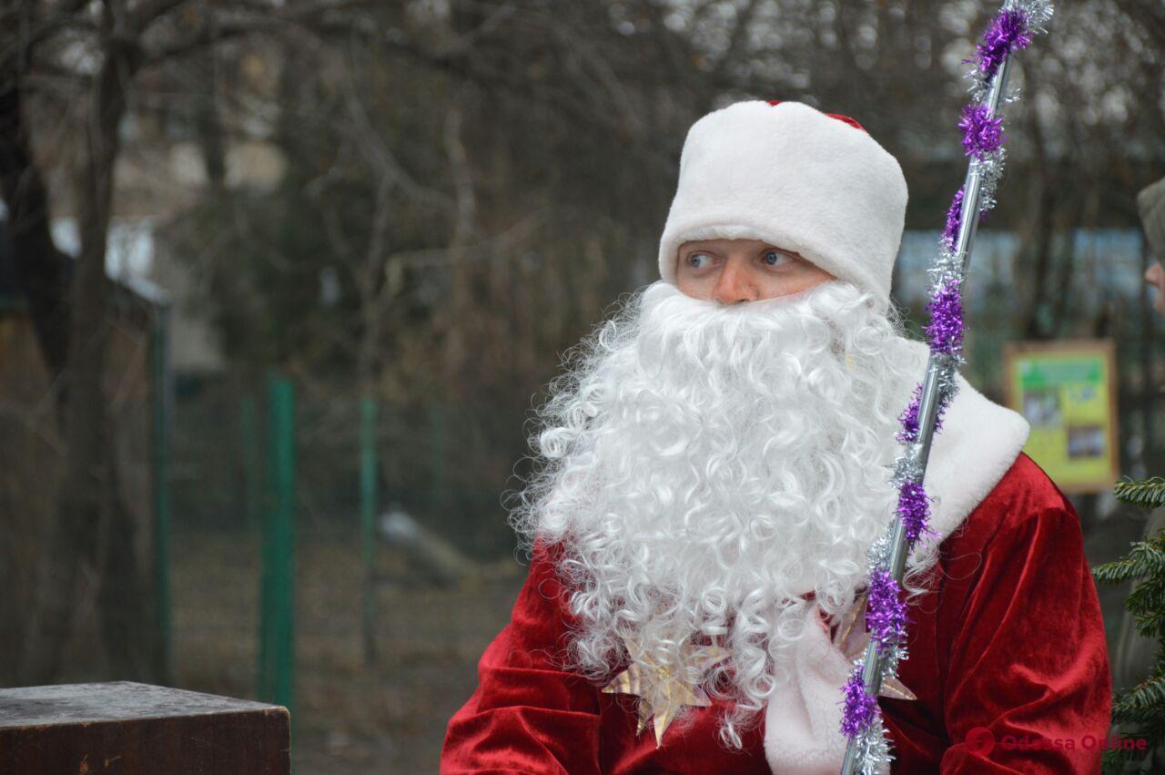 В зоопарке устроили Новогодний праздник для юных одесситов (фото)