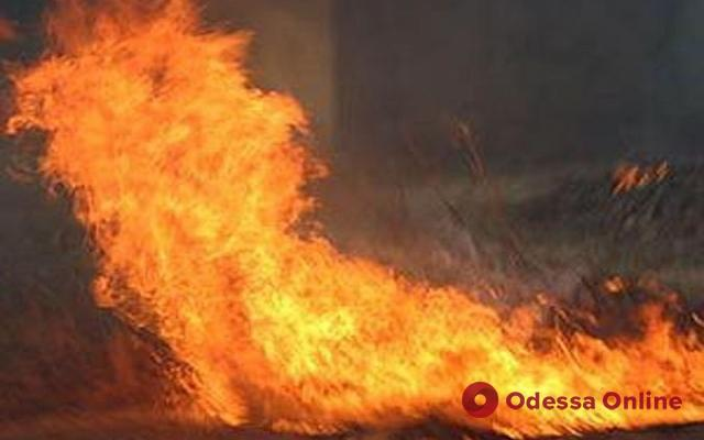 Одесса: в горящем подвале обнаружили тело женщины (обновлено, видео)