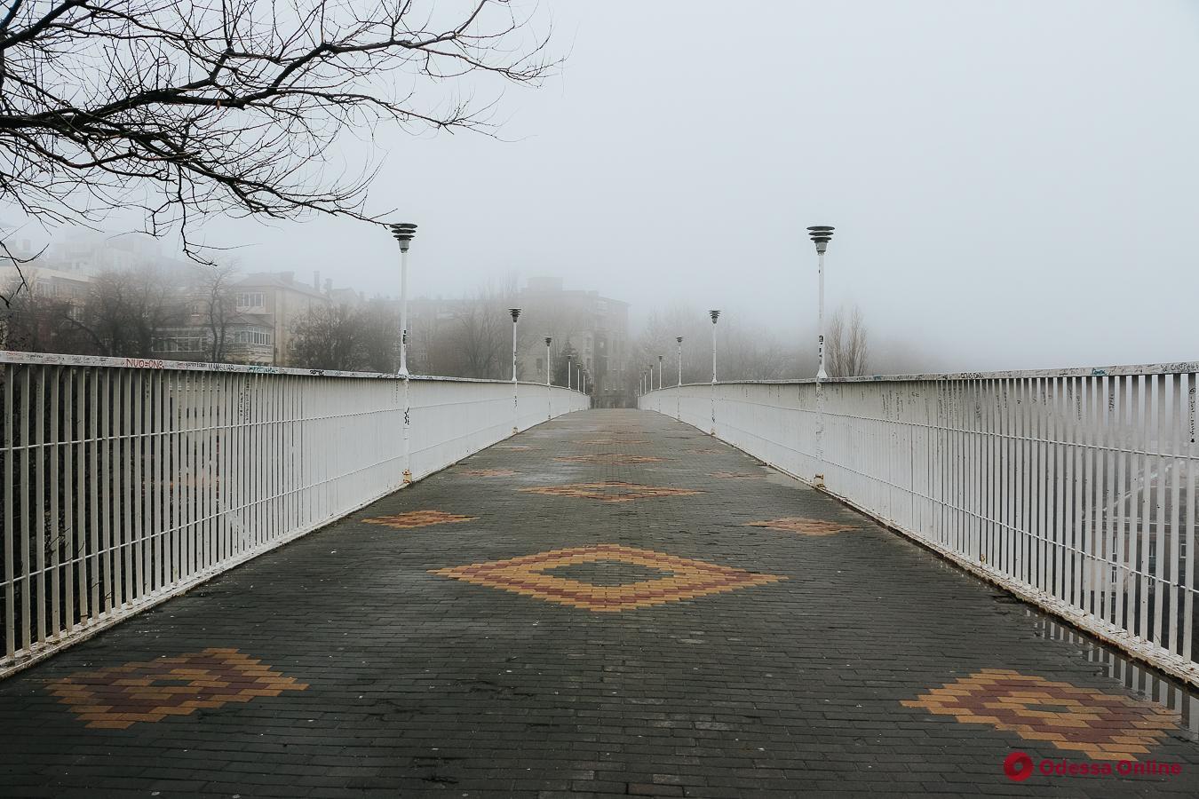 Какая погода ожидает одесситов 16 января