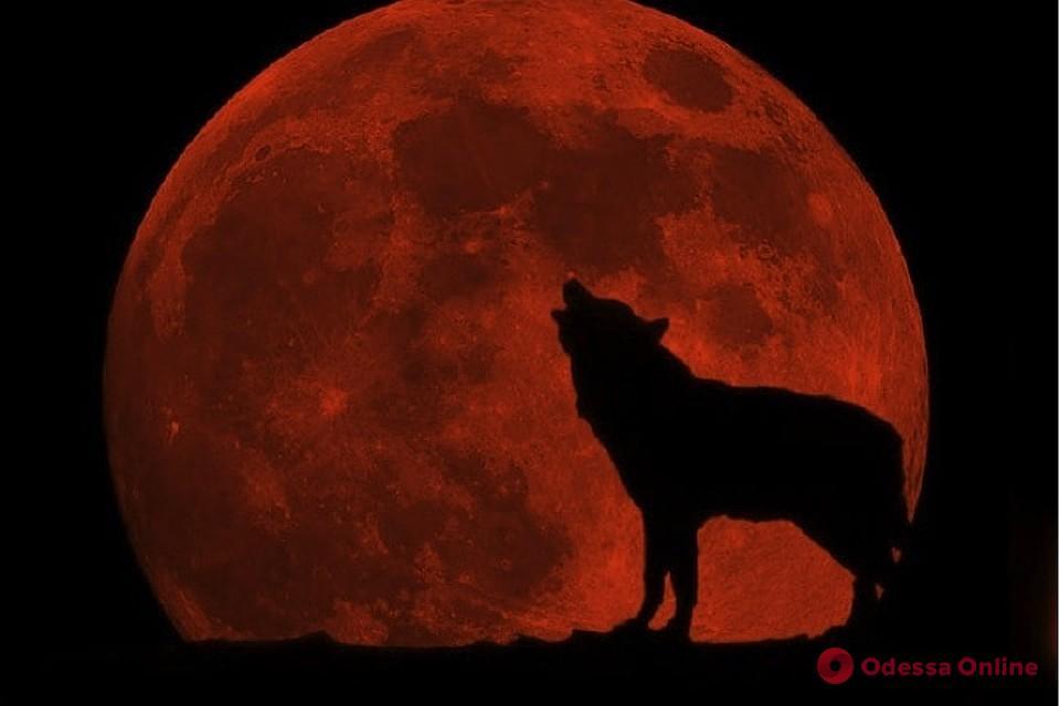 Завтра рано утром одесситы увидят «кровавую луну»