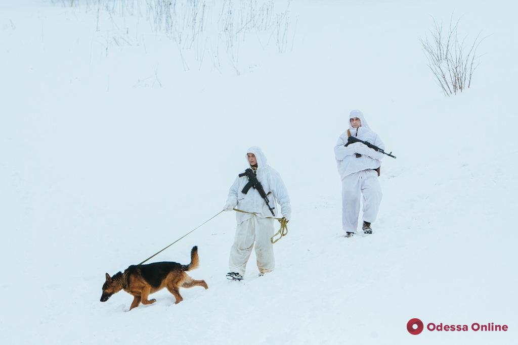 Из Одесской области выдворили двух нелегалов