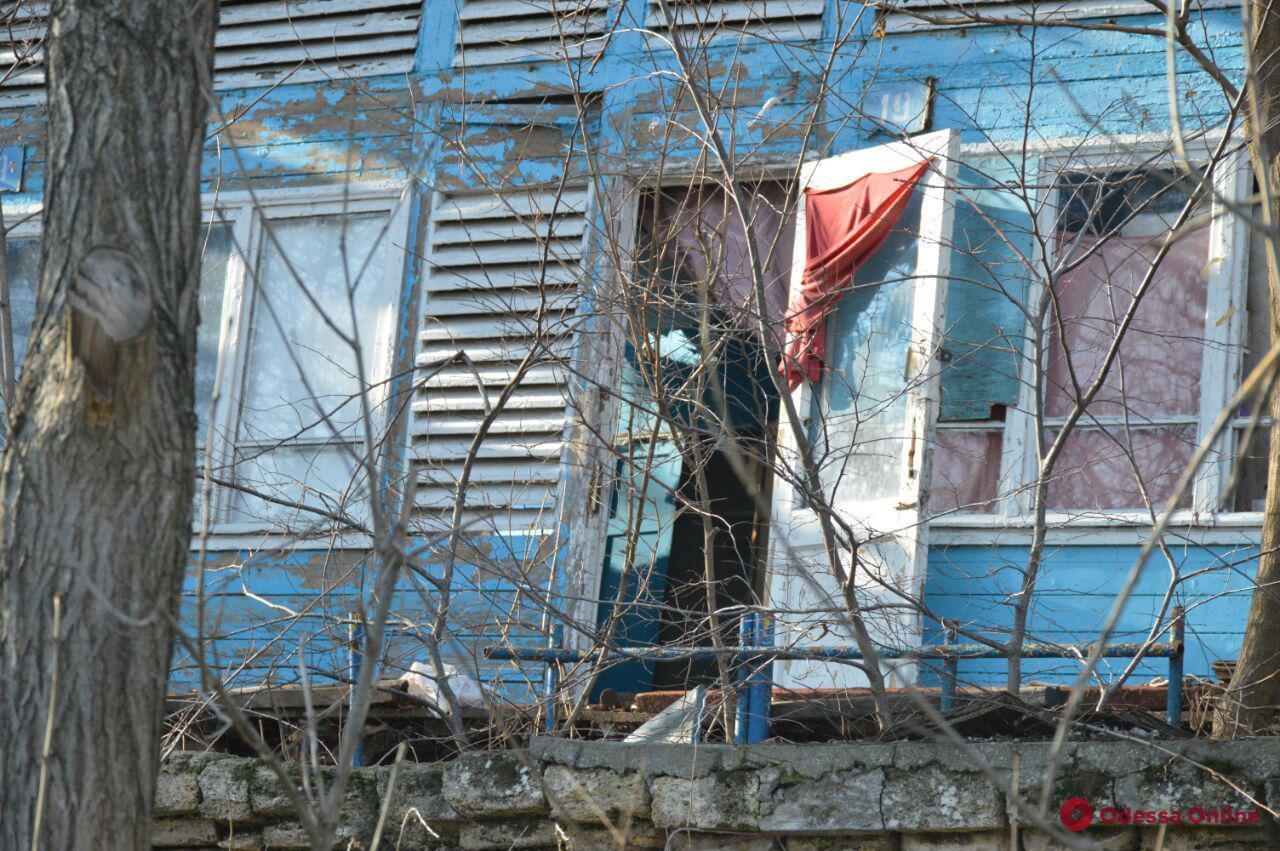 Снос летних домиков на «Чкаловском»: активисты написали заявление в полицию