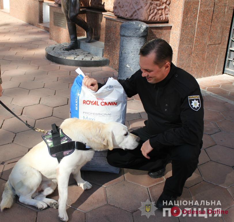 В Одесской области служебные собаки за год помогли раскрыть более тысячи преступлений