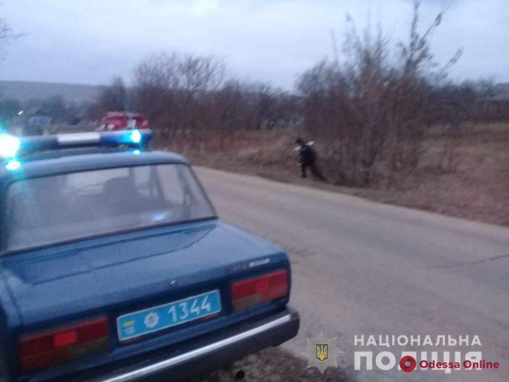 В Одесской области легковушка съехала в кювет: водитель погиб на месте