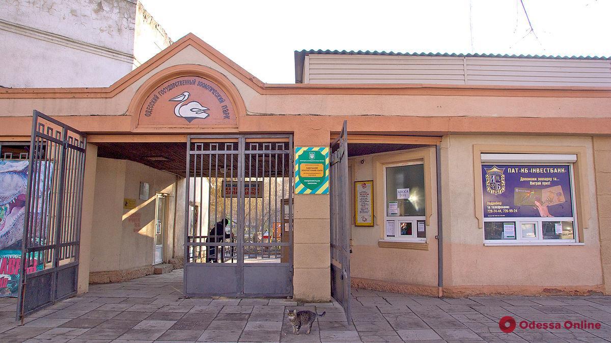 Одесский зоопарк готовят к реконструкции
