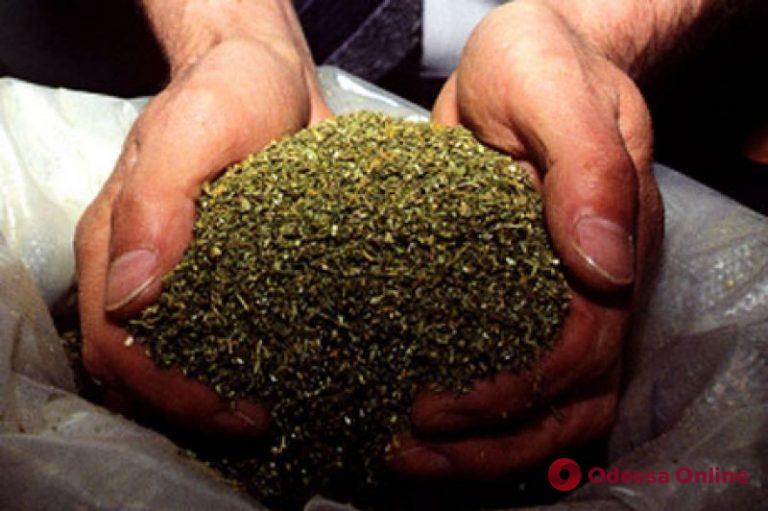 У жителя Одесской области нашли полкилограмма марихуаны