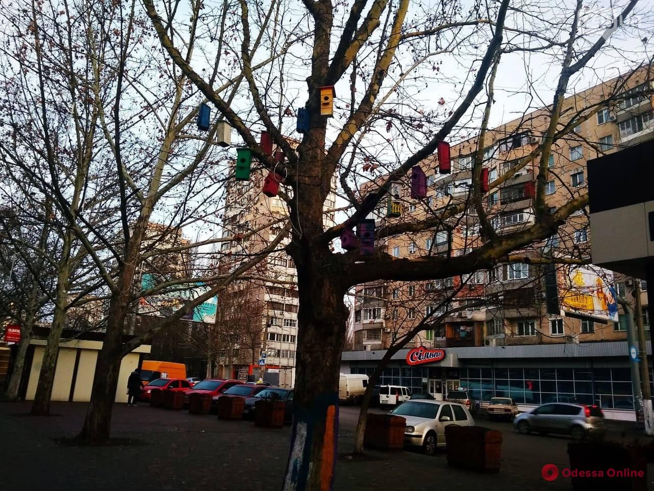 На поселке Котовского появилось «скворечное» дерево
