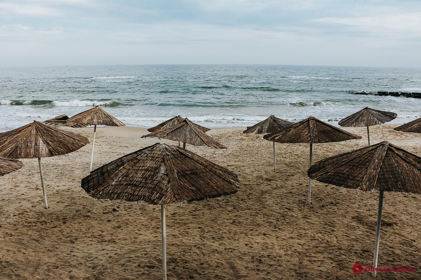 Чайки и волны: прогулка по пустынному одесскому пляжу (фоторепортаж)