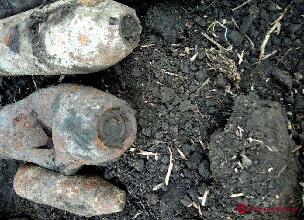В Одесской области нашли свыше сотни боеприпасов времен Второй мировой