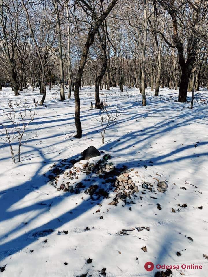 В одесском парке ликвидировали кладбище домашних животных