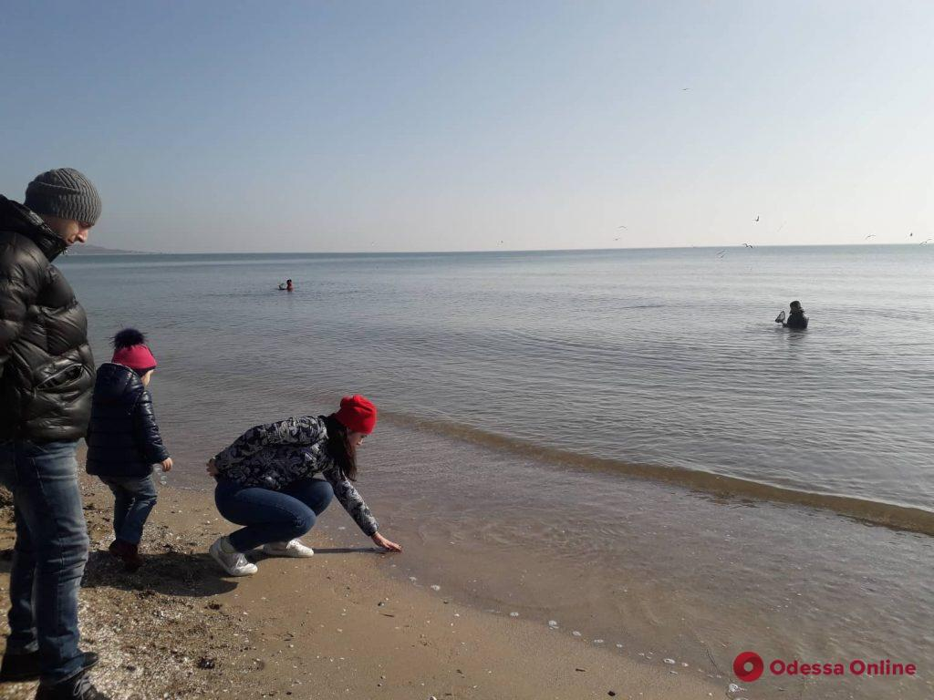 Почти лето: на одесском пляже сегодня загорают (фотофакт)