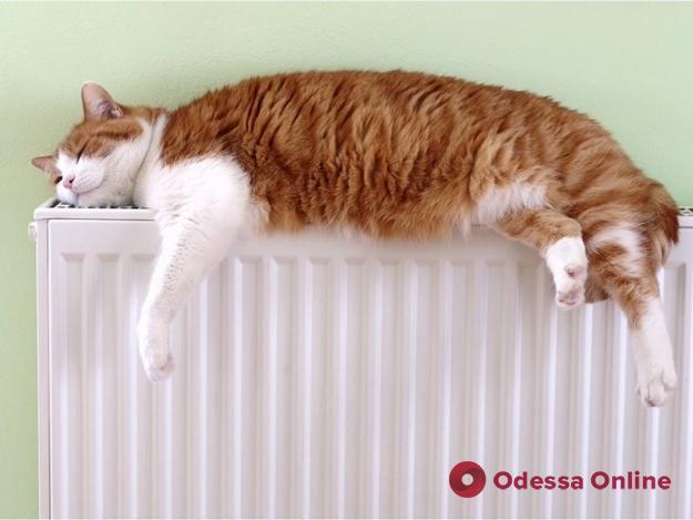 КП «Теплоснабжение города Одессы» уменьшит оплату за тепло