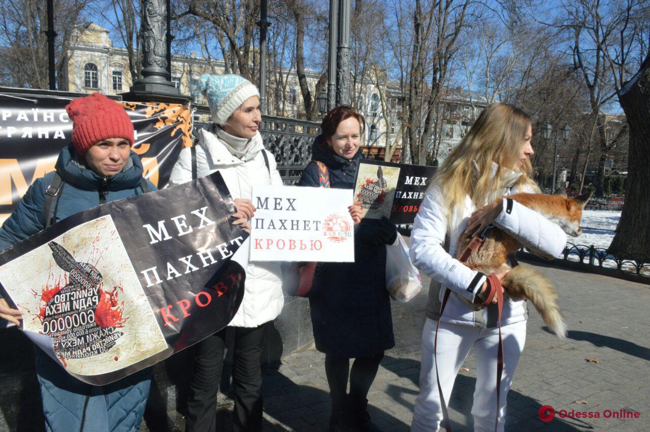 Одесситы присоединились к всеукраинской антимеховой акции