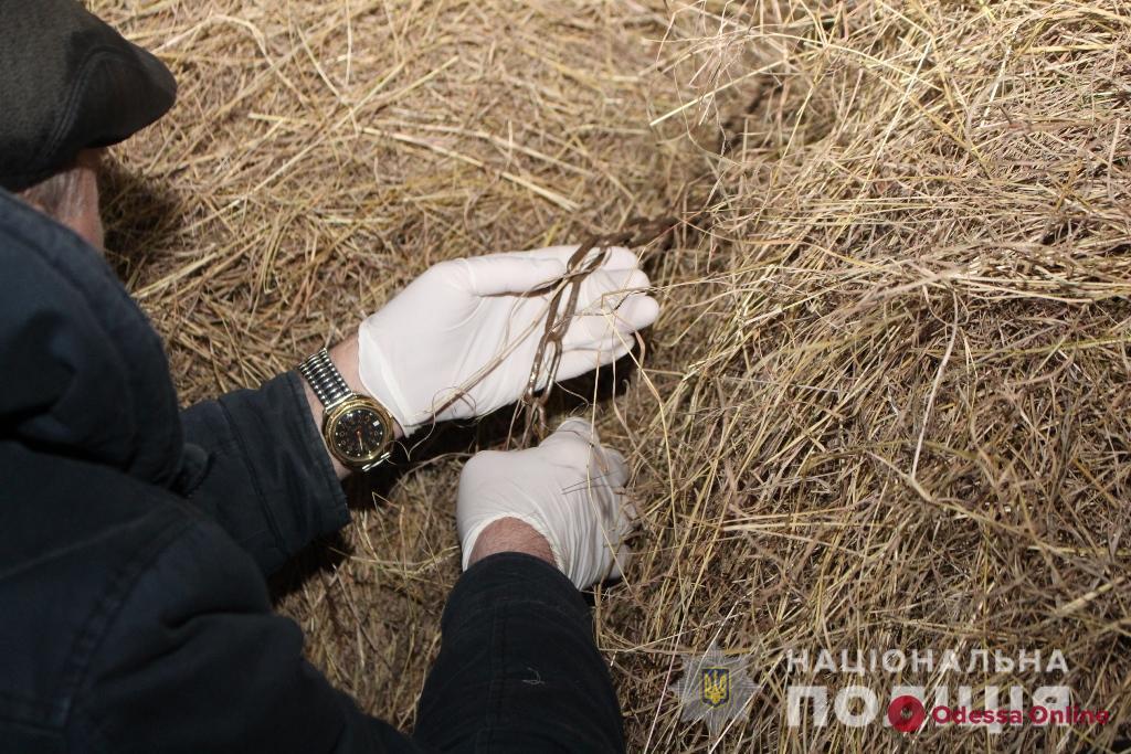 Запутался в цепях и удушился: в Одесской области нашли тело семилетнего мальчика