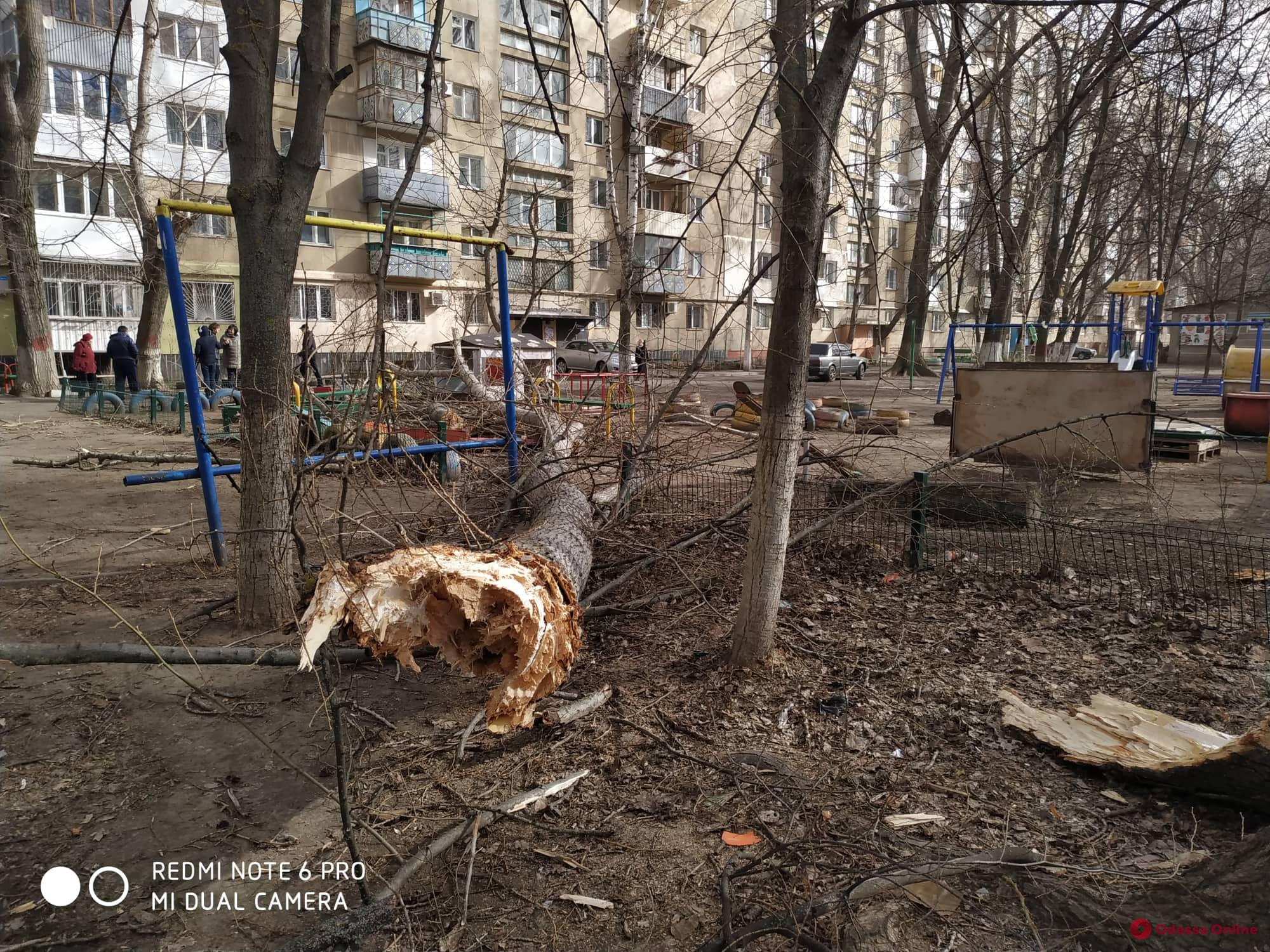 В Одессе на детскую площадку упало дерево — есть пострадавший