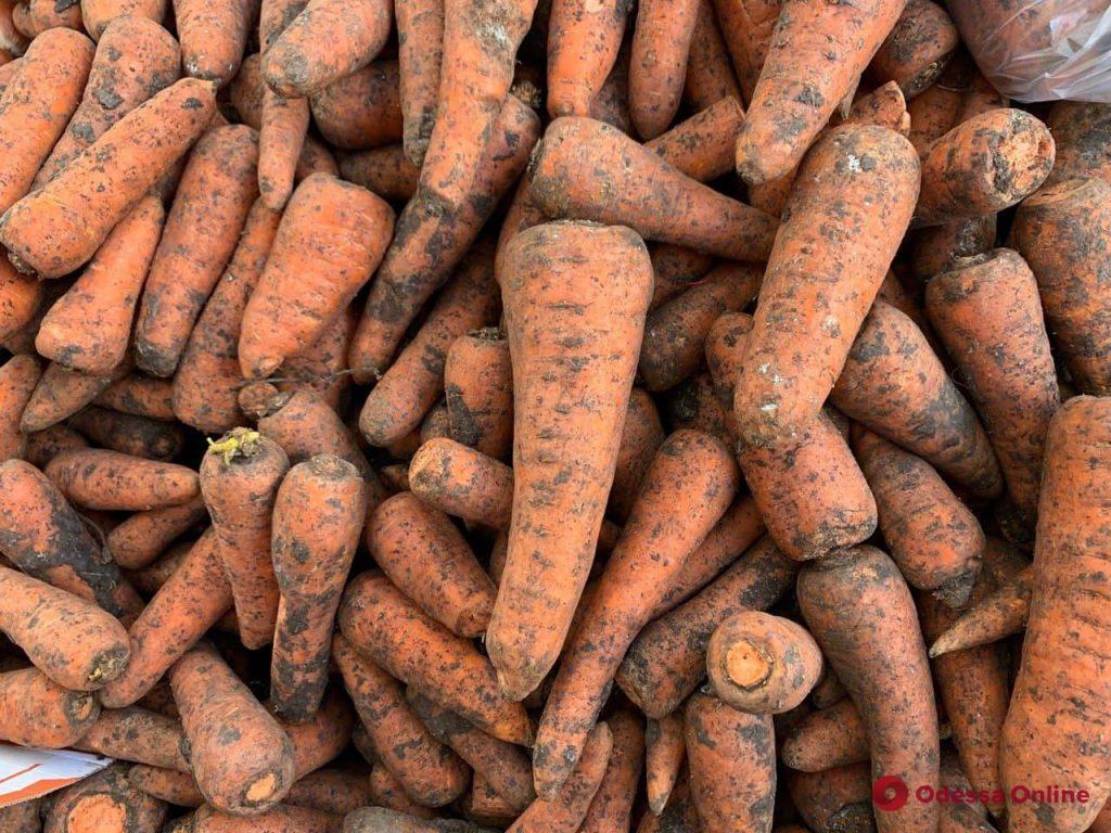 Кабачки, микадо и редис: мартовские цены на одесском «Привозе»