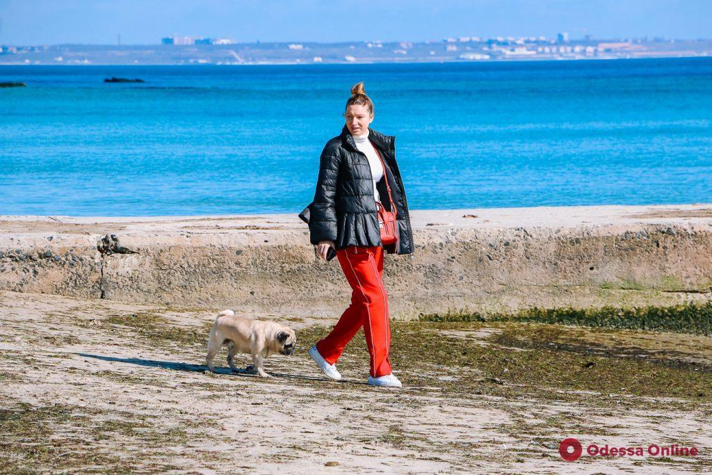 Море цвета лазури и много загорающих: прогулка от Ланжерона до Отрады (фоторепортаж)