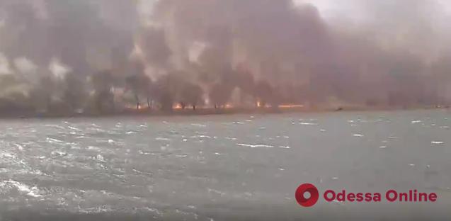 Под Одессой на огромной площади горит камыш (видео, обновлено)
