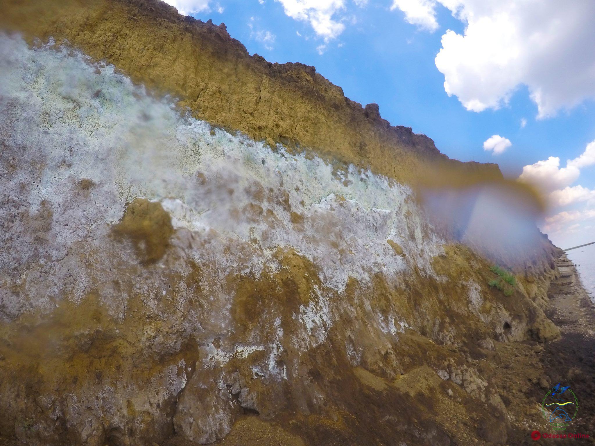 В «Тузловских лиманах» обнаружили пропитанный неизвестным веществом склон