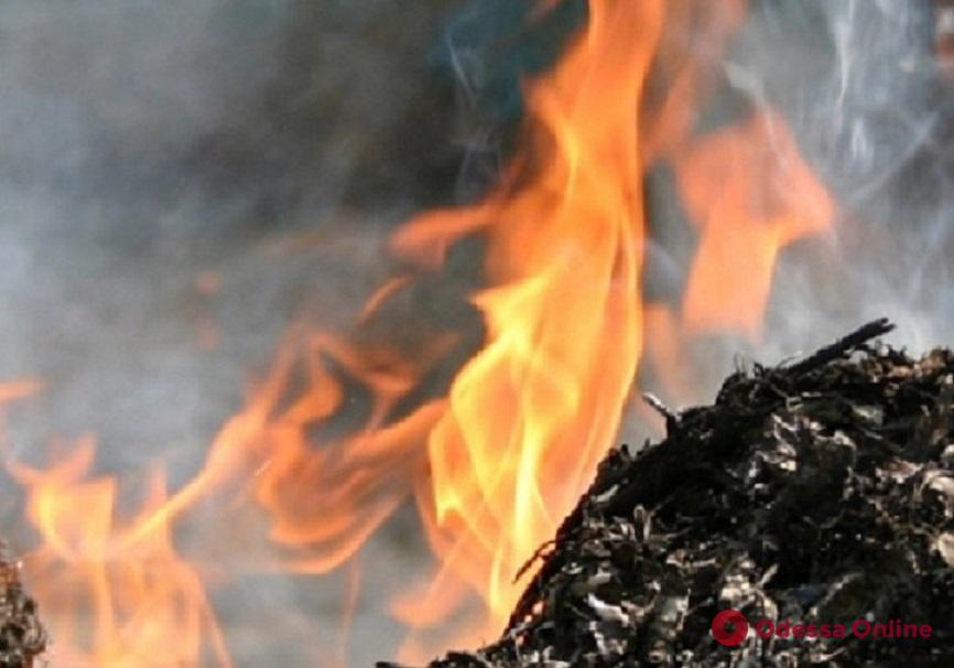 Одесса: ночью возле Летнего театра горел мусор
