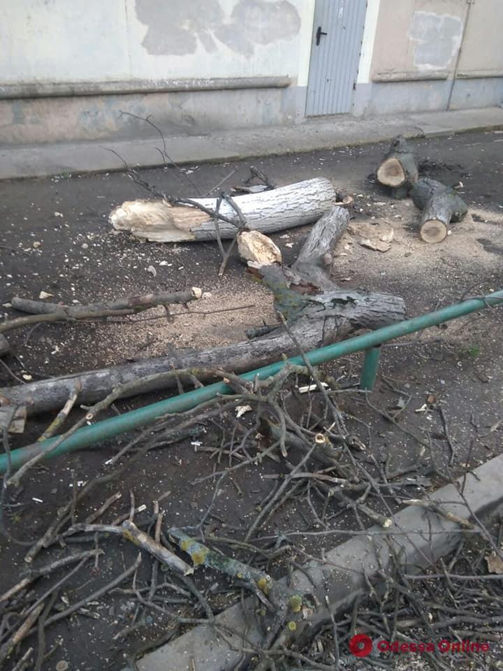 Непогода в Одессе: ветер повалил деревья, билборды и стену торгового центра