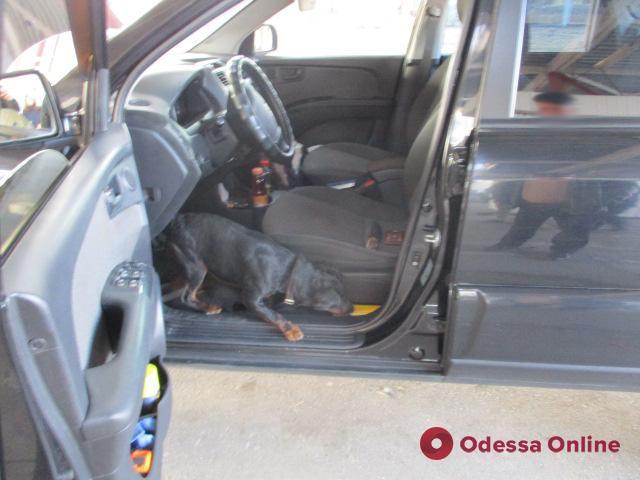 Одесская область: служебный пес обнаружил в авто «травмат» с патронами