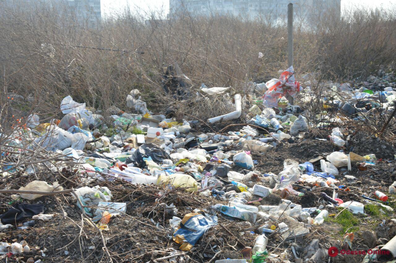 Из-за некоторых жителей частный сектор Лузановки накрывает «мусорной волной» (фото)