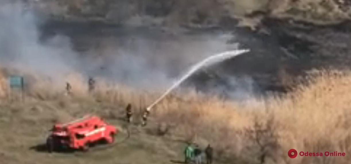 На Крыжановском озере горит сухая трава (видео)