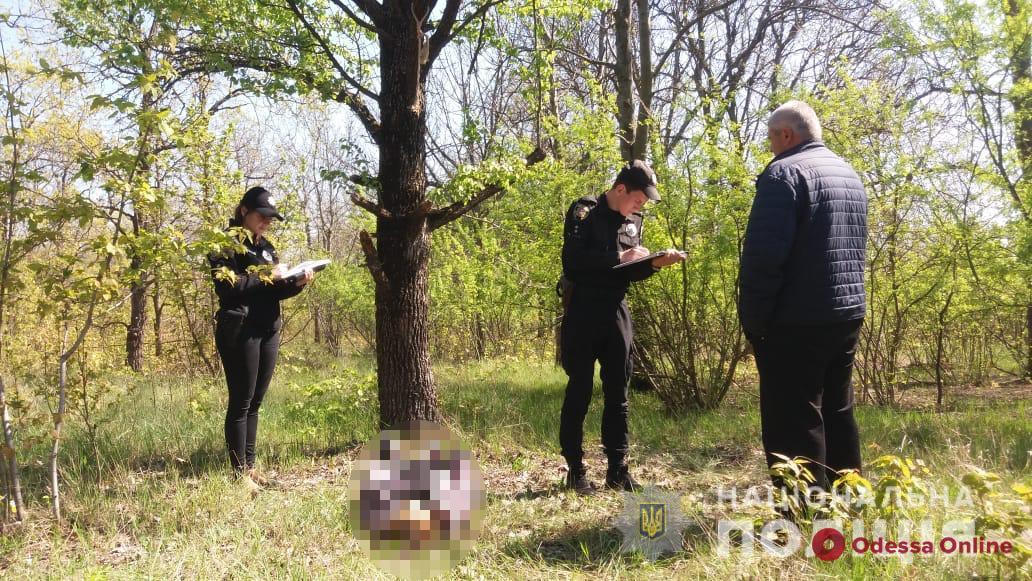 В Одесской области нашли повешенной 15-летнюю девочку