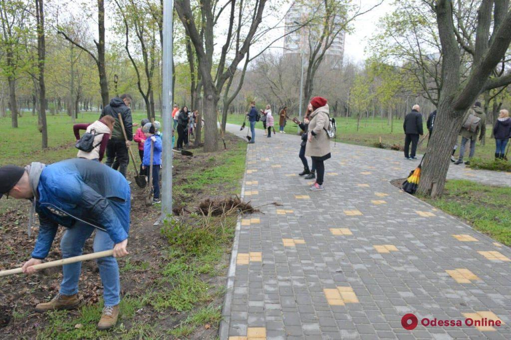 В Одессе высадили четвертую аллею сирени