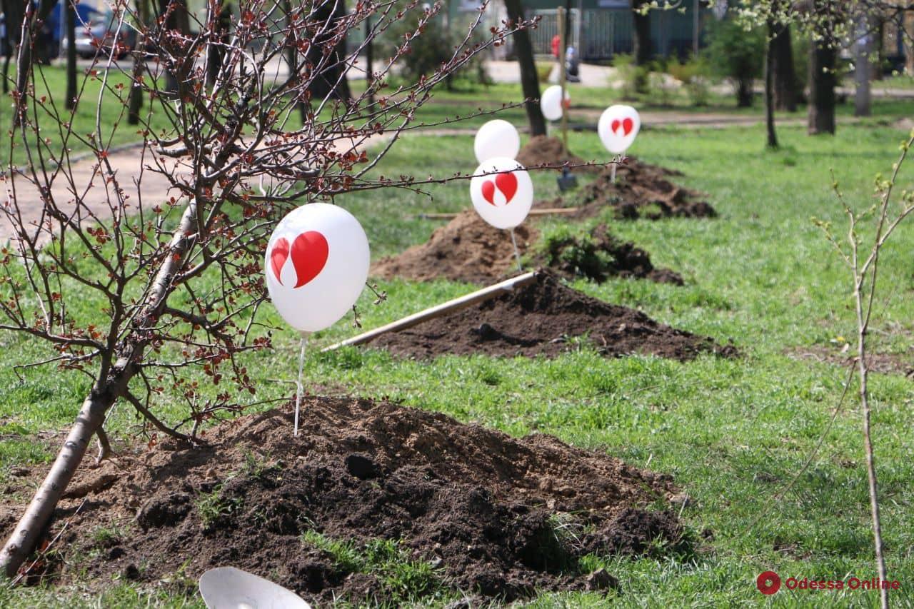 Одесситы с пересаженными органами высадили «Аллею жизни»