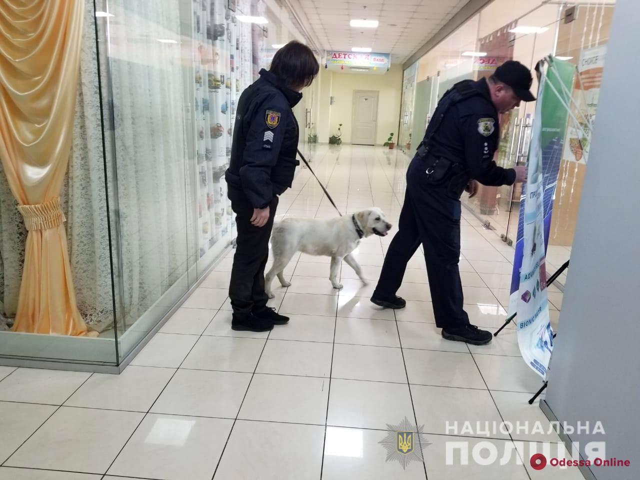 В Одессе ищут взрывчатку в двух торговых центрах (обновлено)