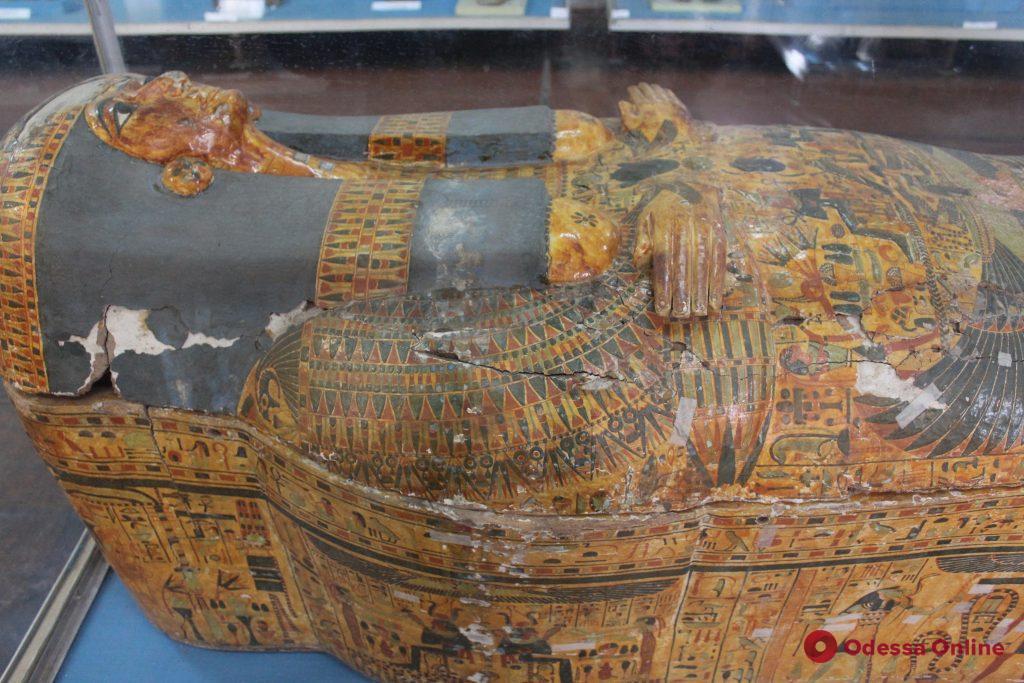 Спасти мумии: в Одесском археологическом музее борются за сохранение уникальной коллекции