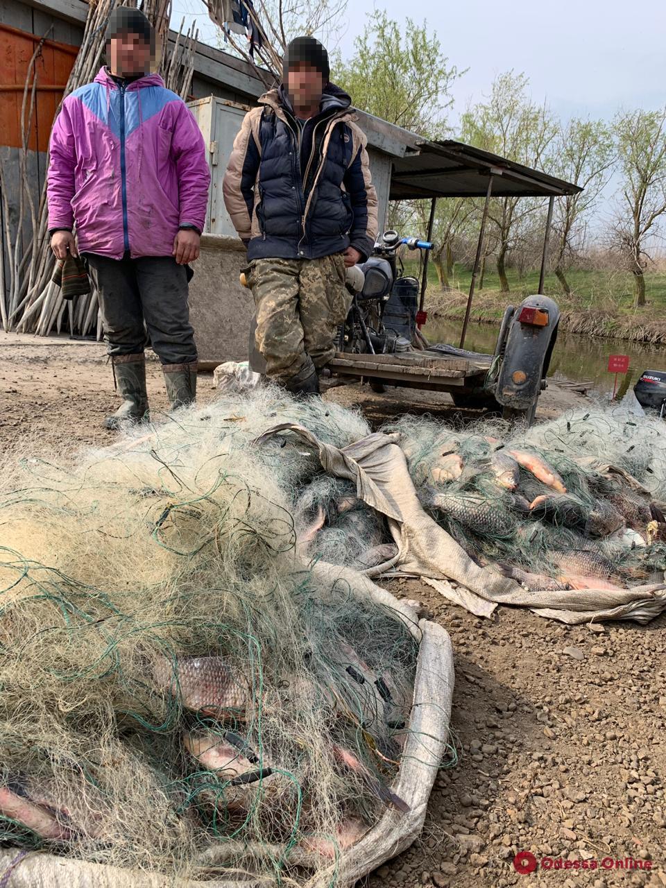 В Одесской области поймали браконьеров с богатым уловом