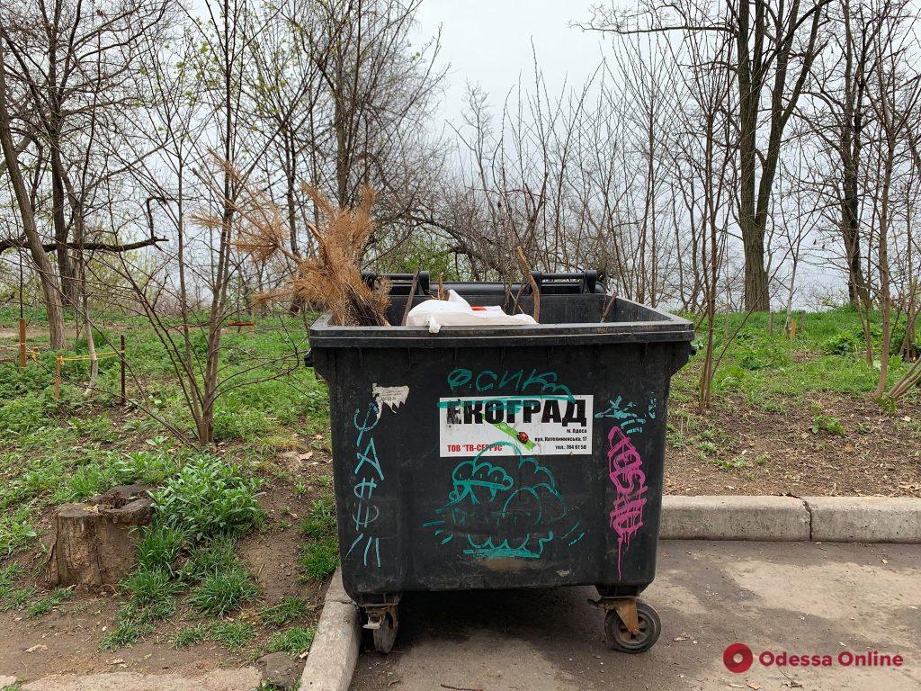 Еще один сдался: в середине апреля одесситы выкинули елку (фотофакт)