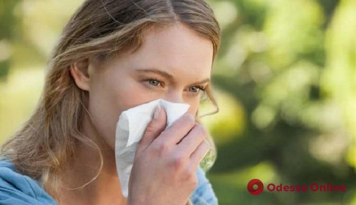 Одесситам рассказали, как избавиться от сезонной аллергии